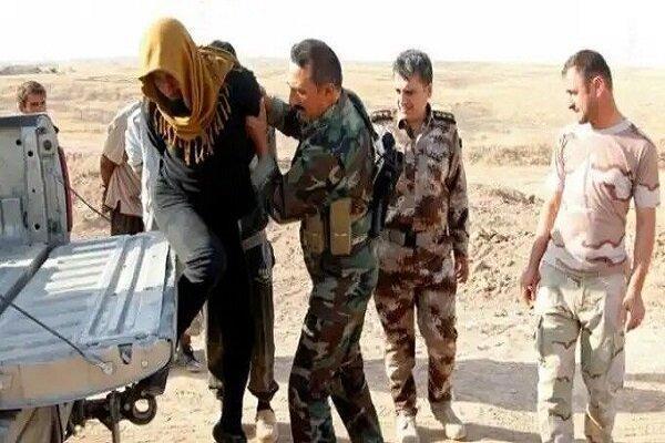 بازداشت چند تروریست به دست نیروهای عراقی در الانبار