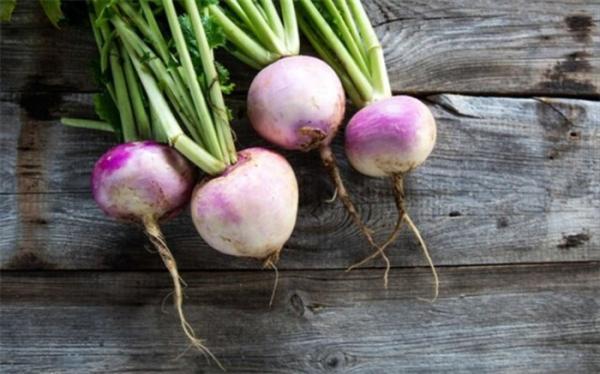 گیاهی موثر در درمان آرتروز و روماتیسم