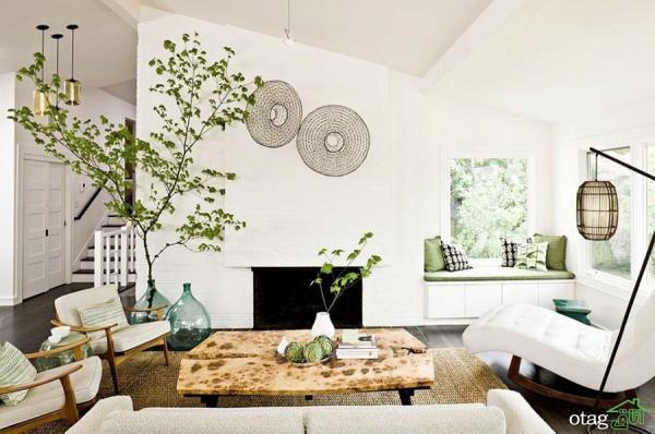 راهنمای رشد و پرورش گیاهان آپارتمانی زمستانی
