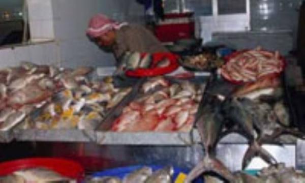 چگونه ماهی تازه را تشخیص دهیم؟